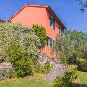 Tenuta Bellosguardo Toscana Lucca Gelsomino